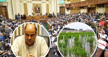 النائب رائف تمراز : الزارعات التعاقدية تقضى على أزمة تسعير المحاصيل الزراعة