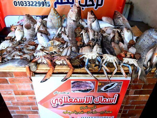 غدا الجمعة…..مهرجان الاسمعلاوي للمأكولات البحريه العاشر من رمضان